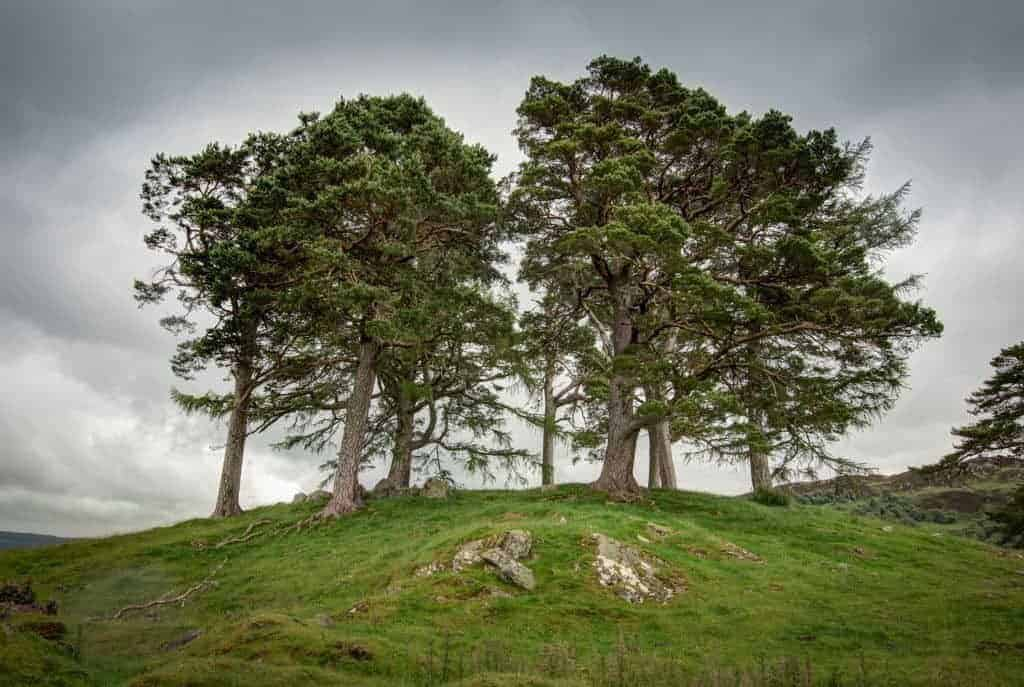Outlander Tour from Inverness